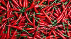 The Quest For The Worlds Hottest Chilli - http://tricks4.top/adolescent/the-quest-for-the-worlds-hottest-chilli/