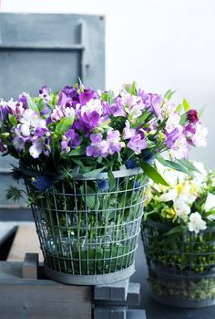 Alstroemeria #bloem #boeket #Mooiwatbloemendoen