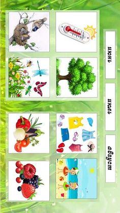 Owl Theme Classroom, Human Body, Kindergarten, Seasons, Holiday Decor, School, Spring, Seasons Of The Year, Kindergartens