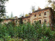 Rząśnik (powiat Złotoryja) Pałac zarządzany przez kombinat rolny w Wojcieszowie był wykorzystywany jako budynek mieszkalny. Nie licząc prac zabezpieczających w latach 60. minionego wieku, nie był remontowany. W efekcie mieszkańcy porzucili go w połowie lat 80. Zdemolowany i pozbawiony dachu dogorywa jako odpychająca rudera pożerana przez dziką roślinność.