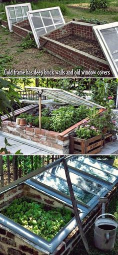 10 Cold Frame Tips for Fall and Winter Veggies Gardening Cold frame has deep brick walls and old window or plastic sheeting covers.Cold frame has deep brick walls and old window or plastic sheeting covers. Cold Frame Gardening, Urban Gardening, Organic Gardening, Small Gardens, Outdoor Gardens, Potager Bio, Diy Greenhouse, Underground Greenhouse, Homemade Greenhouse