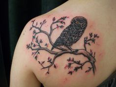 black and white owl tattoos with cherry blossoms | Owl with Cherry Blossoms (Upper Back Tattoo)