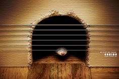 Sonido Sound Production: Mousehole  Agency: Lew´Lara\TBWA, São Paulo, Brazil  Chief Creative Officer: Jaques Lewkowicz  Chief Creative Director: Manir Fadel  Creative Director: Mariana Sá  Art Director: Bernardo Romero  Copywriter: Marcos Almirante  Photographer: Getty Images