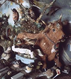 The Death and Burial of Cock Robin by Walter Potter - http://www.cultofweird.com/books/walter-potter-taxidermy/