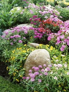 Cottage Garden. Purple coneflower, wild indigo, 'Stella d'Oro' or 'Happy Returns' daylily, New England aster, and Russian sage. For foliage: lady's mantle, lambs' ears, or blue fescue. For roses: Betty Prior or the old-fashioned climber 'Blaze'.
