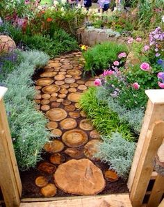 Wood circles walkway