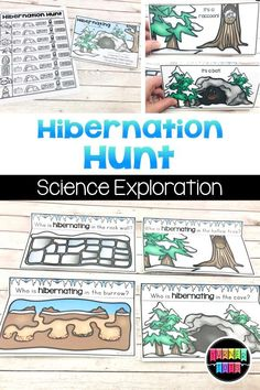 Predict which animals are hiding in each location and flip up to see with this interactive preschool science activity. Perfect science activity for your winter preschool theme! #activities for preschool #activity #activity for toddlers #preschool Preschool Science Activities, Social Studies Activities, Preschool Themes, Winter Activities, Preschool Projects, Toddler Preschool, Classroom Activities, Learning Activities, Snow Theme
