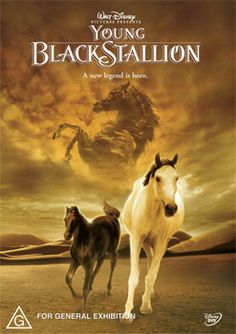 The young black stallion. Great movie