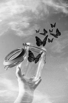 Borboleta saindo do vidro♥