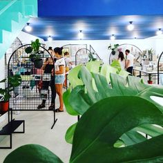 Welcome to our new space! CALLE CUBA 32 • VALENCIA  @AppLetstag #interiorismo #design #interiordesign #diseño #decoracion #arquitectura #deco #decoración #interior #architecture #interiores #decor #inspiration #interiors #ideas #instadeco #tienda #shop #store #valenciagram #vlc #valencia #spain #ruzafa