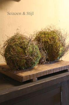Moss Balls in a bucket next to old door - Naturalciniz