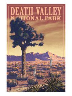 Death Valley National Park, California, Joshua Tree View Premium Poster