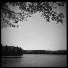 On the bank of Walden Pond Art Print Studio6