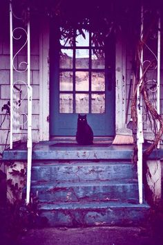 Black cat | #HauntedHUEs - love the picture so much mystery behind it