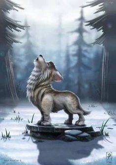 cub howling
