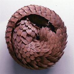 curl | Flickr - Photo Sharing!