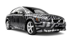 This zebra pattern is very unique, however many cars have specialized patterns and colors.
