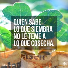 #Siembra #Cosecha #frases #quotes
