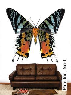 Tapete: Papillon, No.1 - TapetenAgentur  wallpaper