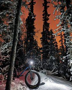 "Dan Sams on Instagram: ""The bright lights of the big city of Whitehorse.  #cometomyyukon #exploreyukon #yukon #yukonlife #terrariders #fatbike #moosebicycle #mtb…"" Fat Bike, Sams, Bright Lights, Mtb, Mountain Biking, Explore, Life, Instagram, All Terrain Bike"