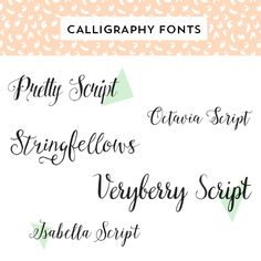 Looking for a beautiful calligraphy font to use for your wedding or maybe your own logo? Try one of these gorgeous typefaces.