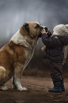 #photography #cute #kid #dog #portrait