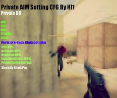 CS 1.6 Steam/NonSteam Private Setting CFG + DLL Original Aim + NoRecoil