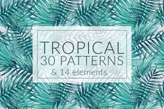 50%OFF! Tropical patterns + elements by Karina Cornelius on @creativemarket