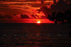red....sunset