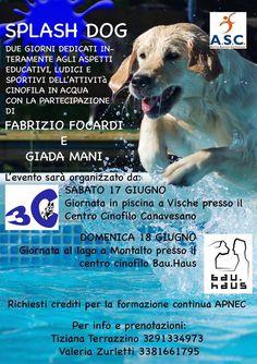"""L'acquaticità per cagnolini: è """"SplashDog"""" con Fabrizio Focardi e Giada Mani :http://www.qualazampa.news/event/lacquaticita-per-cagnolini-e-splashdog-con-fabrizio-focardi-e-giada-mani/"""