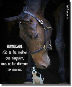 Seja humilde, pois, até o Sol com toda sua grandeza se põe e deixa a Lua brilhar.!...