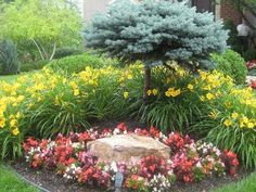 Planting around boulders. #landscaping I've got the perfect plan for this, only modified slightly.