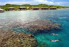 Awesome Caribbean diving in Roatan, Honduras.  The reef in front of Cocoview Resort is the intersection of two great walls that drop off into the deep...  Plus there's a plane and ship wreak onsite.