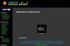 CELLS alive! es una colección de vídeos e imágenes microscópicas sobre células, microorganismos, protozoos acuáticos, parásitos, etc. Cell Biology, Quizzes, Learning, Microorganisms, Studying, Quizes, Teaching, Onderwijs