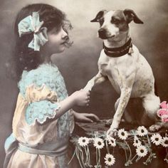 Antique French photo postcard, girl with terrier dog
