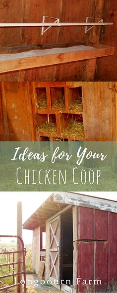 Our chicken coop is complete! We turned a couple of old stalls from a barn that we demolished into an awesome coop and run. See how we did it and get some awesome chicken coop ideas for your own place! via @https://www.pinterest.com/longbournfarm/