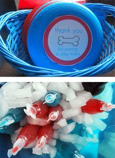 Blue's Clues Birthday party ideas, puppy dog birthday party ideas: frisbee party favors