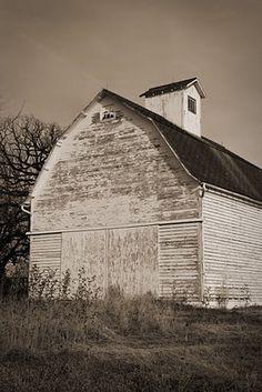 Barn In Rural Iowa