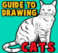Learn the ins and outs of drawing cats and kittens with the following step by step drawing guide to felines. Learn how to draw both the face and body of cats with instructional steps....find it on this page in our helpful drawing lesson.