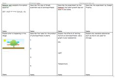 Get your learners to make collaborative revision notes with this great activity. Teaching Plants, Teaching Science, Teaching Tools, Teaching Resources, Teaching Ideas, Additional Science, Gcse Science Revision, Revision Techniques, Revision Notes