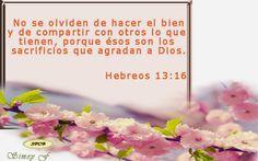 Salmos Proverbios y Citas Bíblicas: El Dios que da la paz levantó de entre los muertos...