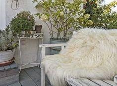 Icelandic lambskin, 100+, long hair, natural white (1)