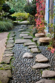 path with stepping stones and decorative stones/gravel, area by shower/toilet??