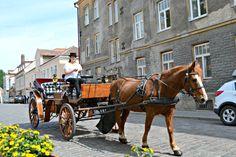 Travel: Tallinn in Estland Kutschen #tallinn #estland #baltikum #europa #städtetrip #citytrip #travel #reisen #tips