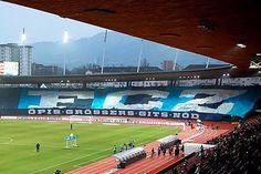 Fcz fc zürich zürcher südkurve fussball fans choreo schweiz Baseball Field, Sports, Switzerland, Football Soccer, Wallpaper Backgrounds, Hs Sports, Sport