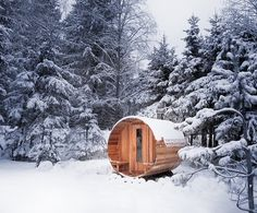 Holy craps. The boyfriend would cut off a limb for this: Wood burning cedarwood sauna from a kit