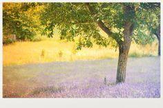 Drôme Provençale. By céline Blondelle Celine, Drawings, Inspiration, Painting, Art, Biblical Inspiration, Art Background, Painting Art, Kunst