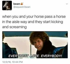 OMW! YAAASSSS! I ride a horse that literally hates EVERY. SINGLE. HORSE AND PONY IN THE WORLD! She's a mare sooooooo its normal
