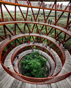 spiralling Camp Adventure tower in midst of a Danish forest ……. Design by EFFEKT architects…… Structural engineering by Arup ……. Photography is by @nickrobotj …….. Located in Gisselfeld Klosters Forest in Denmark……. #architects_need to be feature…… . @architects_need for more The post spiralling Camp Adventure tower in midst of a Danish forest ……. Design by EF… appeared first on .