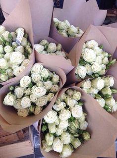 White roses ❤️